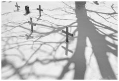 Tree & cross (M8, Elmarit 28 asph, SilverEfex)