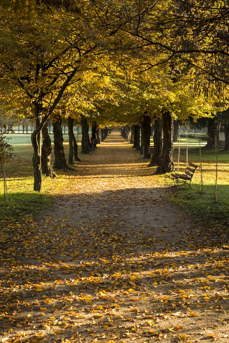 Autumn in Milan.
