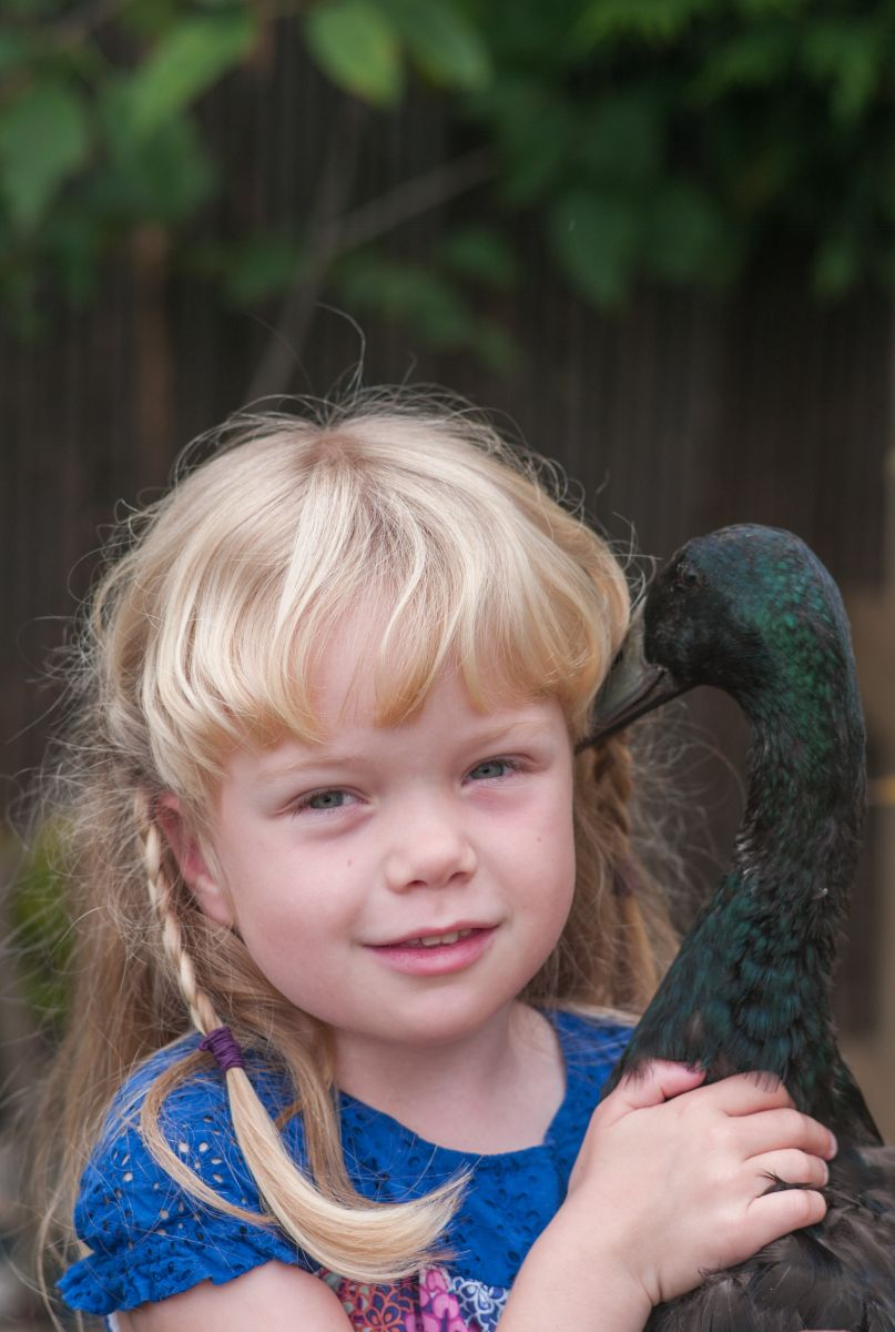 Girl and pet duck