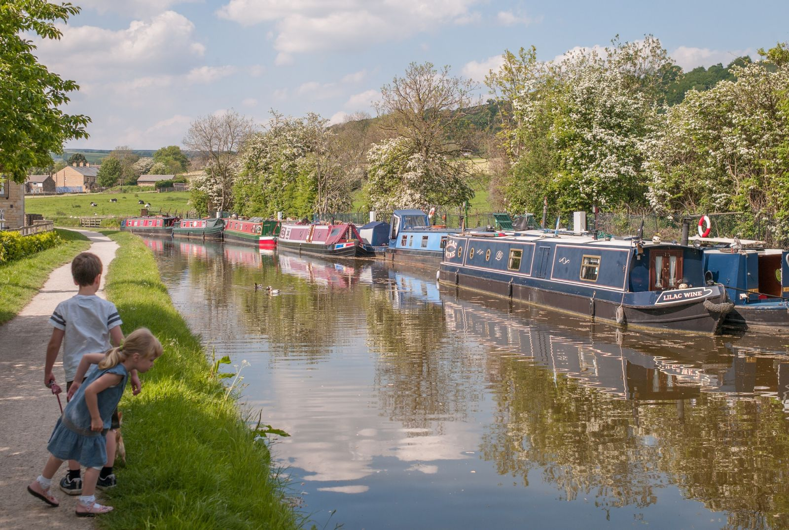 Leeds-Liverpool Canal at Micklethwaite, UK